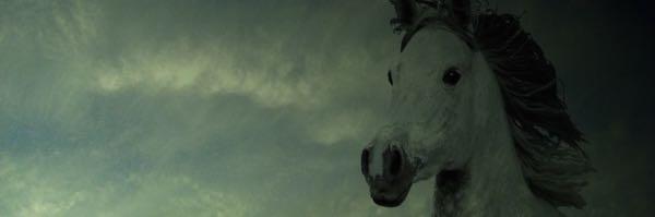 horsemoist600-200